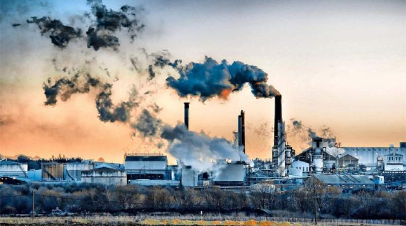 Care sunt cele mai mari probleme ale mediului?