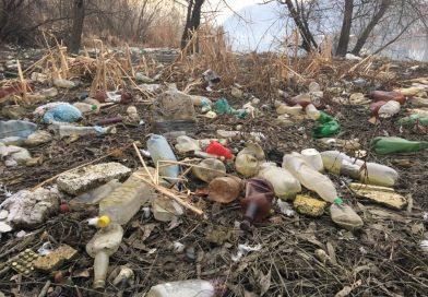 Ce este poluarea solului?